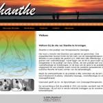 Izdelava spletnih strani shanthe.nl