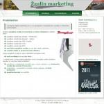 Oblikovanje in izdelava spletnih strani zgalinmarketing.com